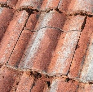 Eagle roofing options archives eagle roofing if you have a concrete tile roof the first thing to note is if you have any broken roof tiles concrete roof tiles act as the shell or the first line of ppazfo