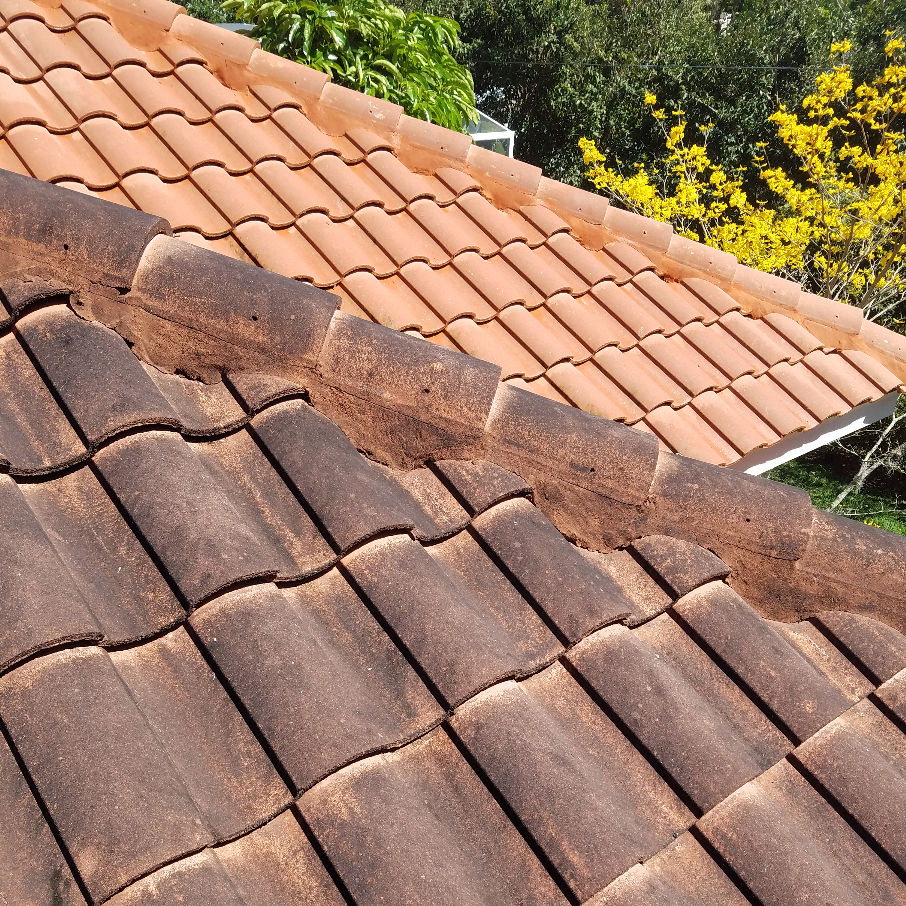 Do Roof Shingles Settle 12 300 About Roof